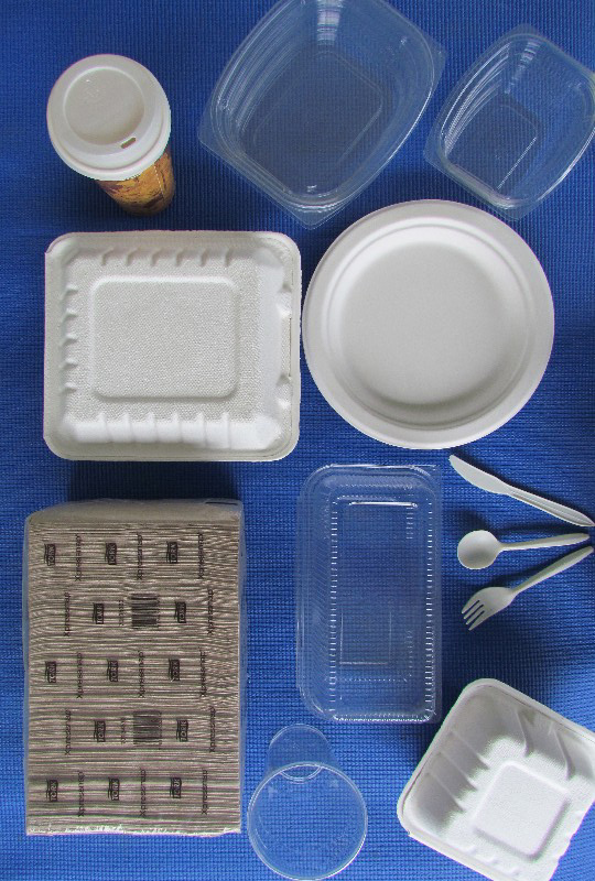 Bioplastic products